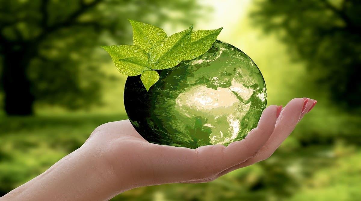 Universities Step Forward to Reduce Carbon Footprint